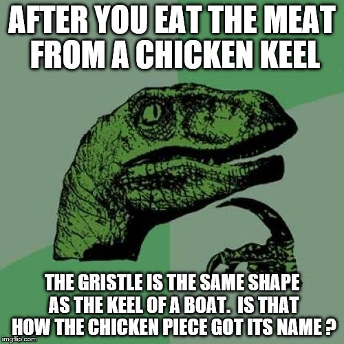 Philosoraptor Meme | AFTER YOU EAT THE MEAT FROM A CHICKEN KEEL THE GRISTLE IS THE SAME SHAPE AS THE KEEL OF A BOAT.  IS THAT HOW THE CHICKEN PIECE GOT ITS NAME  | image tagged in memes,philosoraptor | made w/ Imgflip meme maker
