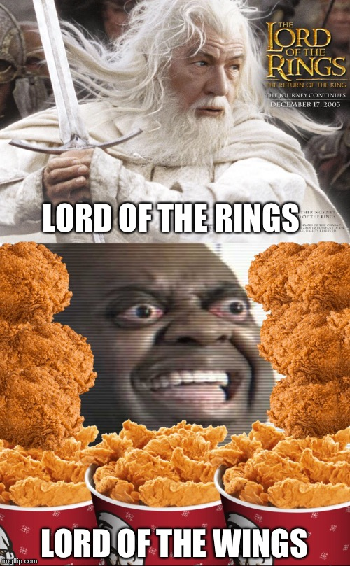 Very Noice. | LORD OF THE RINGS LORD OF THE WINGS | image tagged in funny memes | made w/ Imgflip meme maker