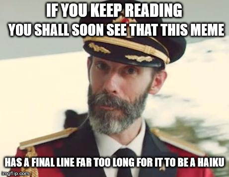 The captain is right; This meme is not a haiku, Though the title is.  | IF YOU KEEP READING YOU SHALL SOON SEE THAT THIS MEME HAS A FINAL LINE FAR TOO LONG FOR IT TO BE A HAIKU | image tagged in captain obvious,memes,haiku | made w/ Imgflip meme maker