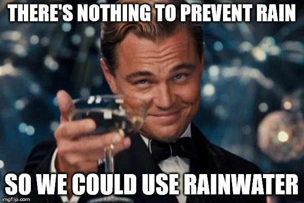 Leonardo Dicaprio Cheers Meme | THERE'S NOTHING TO PREVENT RAIN SO WE COULD USE RAINWATER | image tagged in memes,leonardo dicaprio cheers | made w/ Imgflip meme maker
