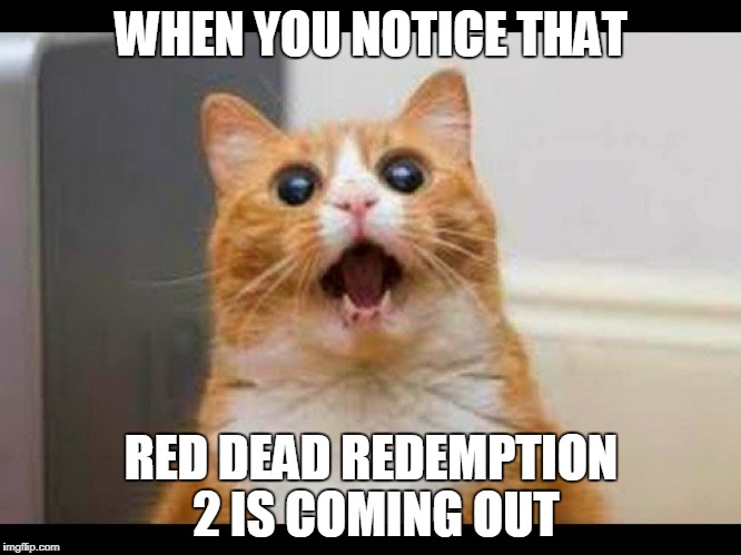 WHEN YOU NOTICE THAT RED DEAD REDEMPTION 2 IS COMING OUT | image tagged in shhhhiii | made w/ Imgflip meme maker