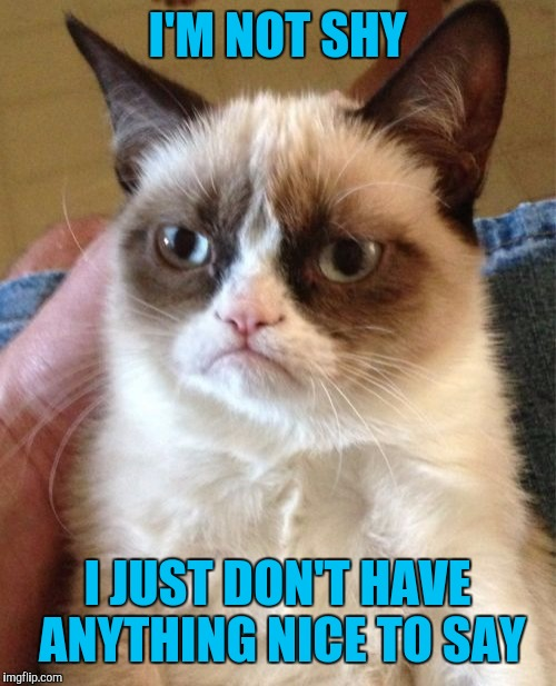 Grumpy Cat Meme | I'M NOT SHY I JUST DON'T HAVE ANYTHING NICE TO SAY | image tagged in memes,grumpy cat | made w/ Imgflip meme maker