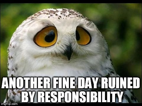 ANOTHER FINE DAY RUINED BY RESPONSIBILITY | made w/ Imgflip meme maker