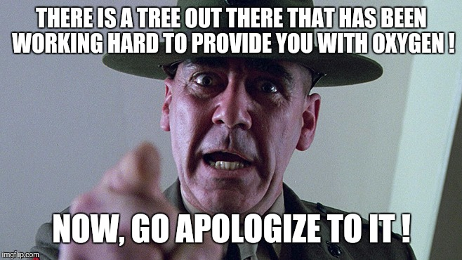 You should apologize | THERE IS A TREE OUT THERE THAT HAS BEEN WORKING HARD TO PROVIDE YOU WITH OXYGEN ! NOW, GO APOLOGIZE TO IT ! | image tagged in memes,apology,drill instructor,trees | made w/ Imgflip meme maker