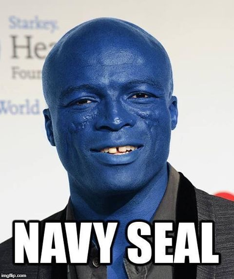 Navy Seal | image tagged in seal | made w/ Imgflip meme maker
