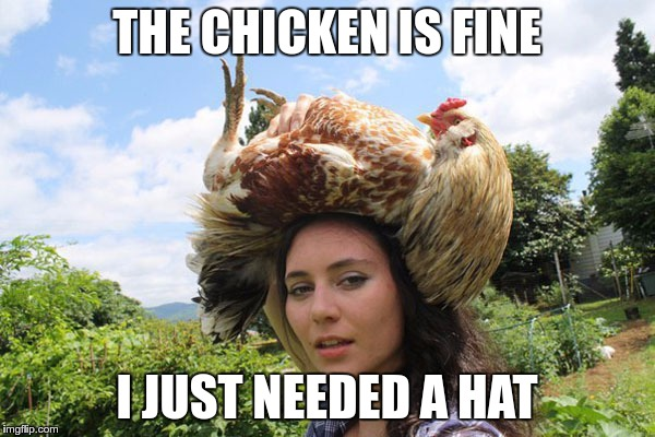 THE CHICKEN IS FINE I JUST NEEDED A HAT | made w/ Imgflip meme maker