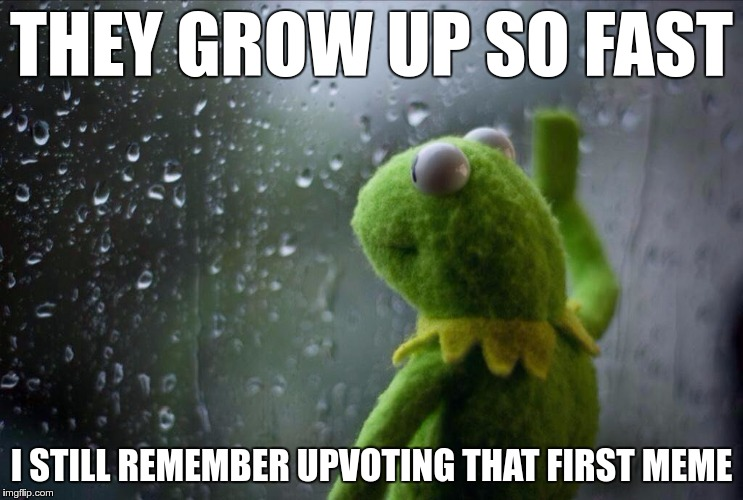 When Users Skyrocket | THEY GROW UP SO FAST I STILL REMEMBER UPVOTING THAT FIRST MEME | image tagged in memes,funny,rainy,window,kermit,grow | made w/ Imgflip meme maker