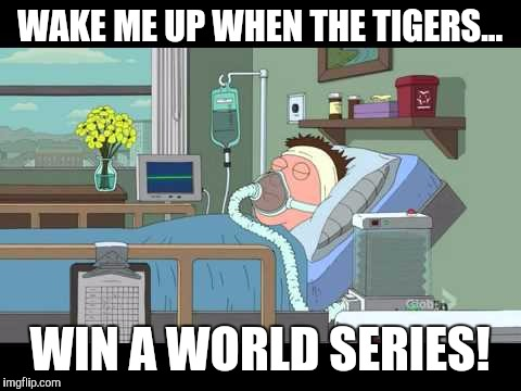 WAKE ME UP WHEN THE TIGERS... WIN A WORLD SERIES! | made w/ Imgflip meme maker