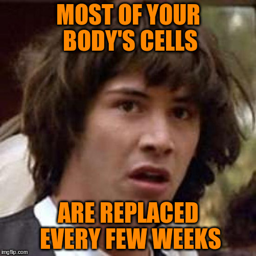 Conspiracy Keanu Meme | MOST OF YOUR BODY'S CELLS ARE REPLACED EVERY FEW WEEKS | image tagged in memes,conspiracy keanu | made w/ Imgflip meme maker