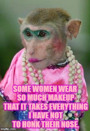 SOME WOMEN WEAR SO MUCH MAKEUP THAT IT TAKES EVERYTHING I HAVE NOT TO HONK THEIR NOSE. | image tagged in make up,clown,funny,funny memes,memes | made w/ Imgflip meme maker