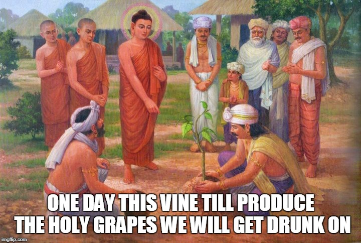 ONE DAY THIS VINE TILL PRODUCE THE HOLY GRAPES WE WILL GET DRUNK ON | made w/ Imgflip meme maker