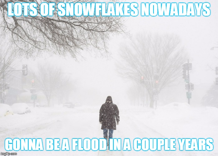 LOTS OF SNOWFLAKES NOWADAYS GONNA BE A FLOOD IN A COUPLE YEARS | made w/ Imgflip meme maker