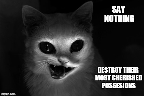 SAY NOTHING DESTROY THEIR MOST CHERISHED POSSESIONS | made w/ Imgflip meme maker