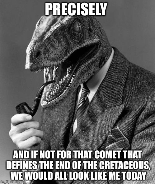Evolution | PRECISELY AND IF NOT FOR THAT COMET THAT DEFINES THE END OF THE CRETACEOUS, WE WOULD ALL LOOK LIKE ME TODAY | image tagged in evolution | made w/ Imgflip meme maker