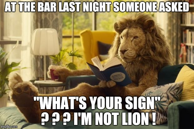 "Lion relaxing | AT THE BAR LAST NIGHT SOMEONE ASKED ""WHAT'S YOUR SIGN"" ? ? ? I'M NOT LION ! 