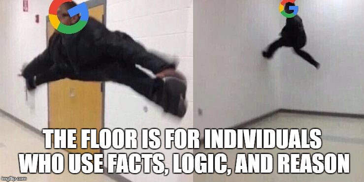 Google Memo | THE FLOOR IS FOR INDIVIDUALS WHO USE FACTS, LOGIC, AND REASON | image tagged in google,googlemanifesto,logic,sjw,feminism,googlememo | made w/ Imgflip meme maker