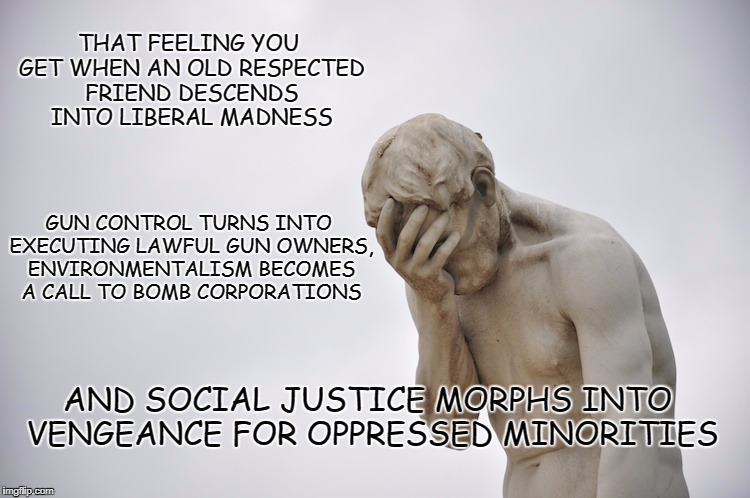 Liberal madness | THAT FEELING YOU GET WHEN AN OLD RESPECTED FRIEND DESCENDS INTO LIBERAL MADNESS AND SOCIAL JUSTICE MORPHS INTO VENGEANCE FOR OPPRESSED MINOR | image tagged in disappointment | made w/ Imgflip meme maker
