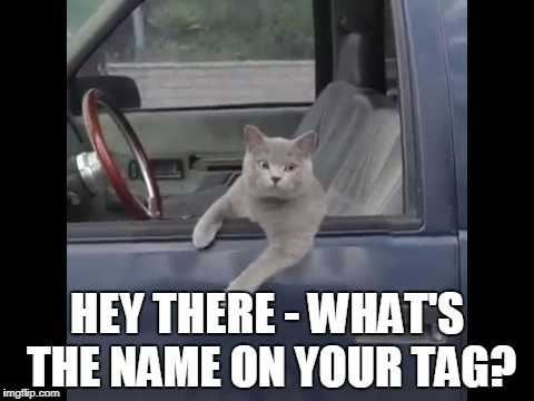 HEY THERE - WHAT'S THE NAME ON YOUR TAG? | made w/ Imgflip meme maker