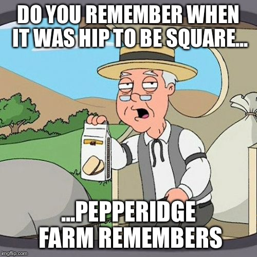 Hip To Be Square | DO YOU REMEMBER WHEN IT WAS HIP TO BE SQUARE... ...PEPPERIDGE FARM REMEMBERS | image tagged in memes,pepperidge farm remembers,hueylewisandthenews,itshiptobesquare | made w/ Imgflip meme maker