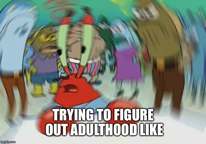 Mr Krabs Blur Meme Meme | TRYING TO FIGURE OUT ADULTHOOD LIKE | image tagged in memes,mr krabs blur meme | made w/ Imgflip meme maker