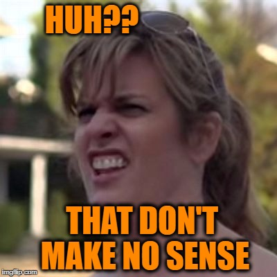seriously? | HUH?? THAT DON'T MAKE NO SENSE | image tagged in seriously | made w/ Imgflip meme maker