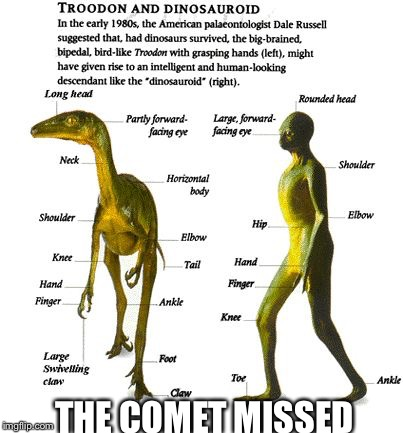 What if... | THE COMET MISSED | image tagged in dinosaur evolved,memes | made w/ Imgflip meme maker