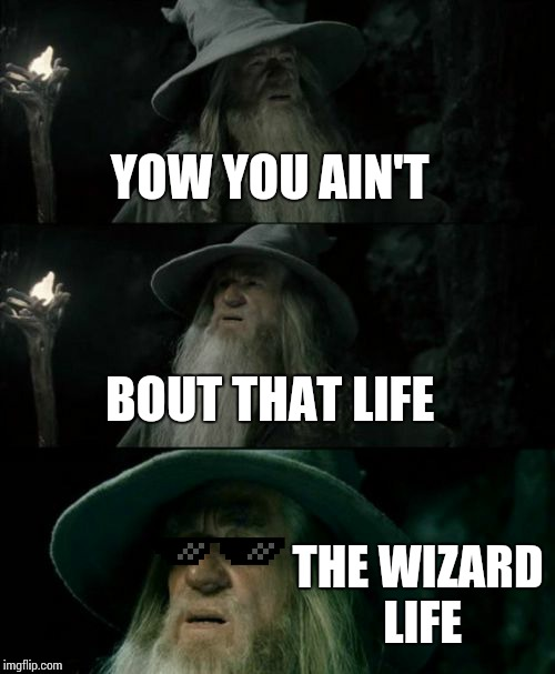 Confused Gandalf Meme | YOW YOU AIN'T BOUT THAT LIFE THE WIZARD LIFE | image tagged in memes,confused gandalf | made w/ Imgflip meme maker