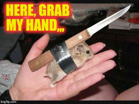 Lock and Load Hamster | HERE, GRAB MY HAND,,, | image tagged in lock and load hamster | made w/ Imgflip meme maker