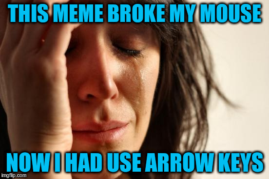 First World Problems Meme | THIS MEME BROKE MY MOUSE NOW I HAD USE ARROW KEYS | image tagged in memes,first world problems | made w/ Imgflip meme maker