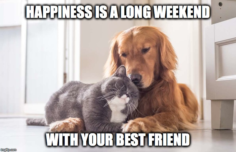 Happiness | HAPPINESS IS A LONG WEEKEND WITH YOUR BEST FRIEND | image tagged in besties | made w/ Imgflip meme maker