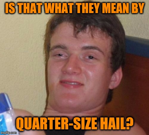 10 Guy Meme | IS THAT WHAT THEY MEAN BY QUARTER-SIZE HAIL? | image tagged in memes,10 guy | made w/ Imgflip meme maker