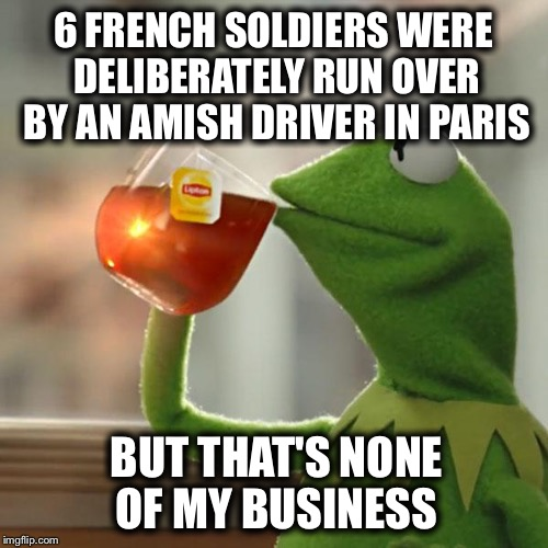 The religion of peace is at it again :( | 6 FRENCH SOLDIERS WERE DELIBERATELY RUN OVER BY AN AMISH DRIVER IN PARIS BUT THAT'S NONE OF MY BUSINESS | image tagged in memes,but thats none of my business,kermit the frog,muslim,amish | made w/ Imgflip meme maker