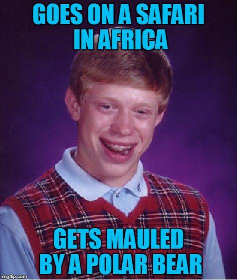 Bad Luck Brian Wayfarer, Chapter 1: Peril in the Dark Continent | GOES ON A SAFARI IN AFRICA GETS MAULED BY A POLAR BEAR | image tagged in memes,bad luck brian,travel,bad luck brian wayfarer,safari,africa | made w/ Imgflip meme maker