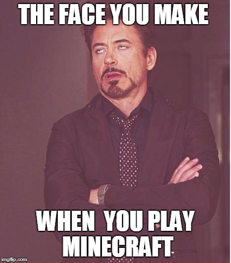 Face You Make Robert Downey Jr Meme | THE FACE YOU MAKE WHEN  YOU PLAY  MINECRAFT | image tagged in memes,face you make robert downey jr | made w/ Imgflip meme maker