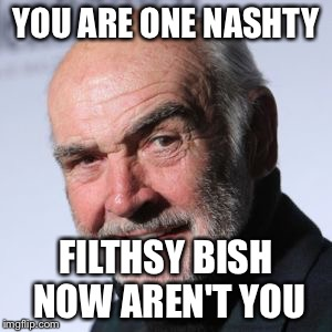 YOU ARE ONE NASHTY FILTHSY BISH NOW AREN'T YOU | made w/ Imgflip meme maker