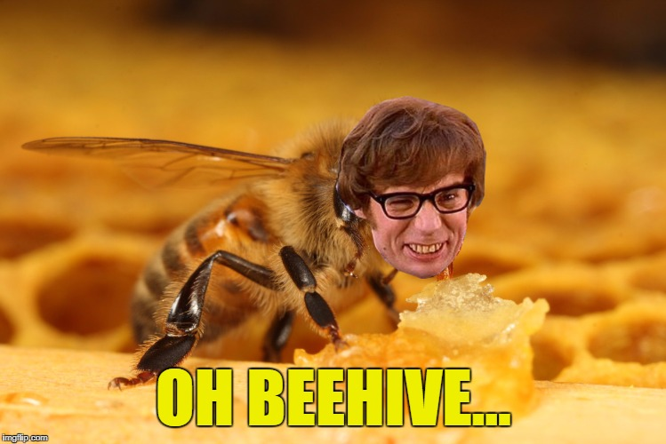 OH BEEHIVE... | made w/ Imgflip meme maker