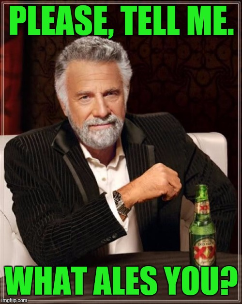 The Most Interesting Man In The World Meme | PLEASE, TELL ME. WHAT ALES YOU? | image tagged in memes,the most interesting man in the world | made w/ Imgflip meme maker