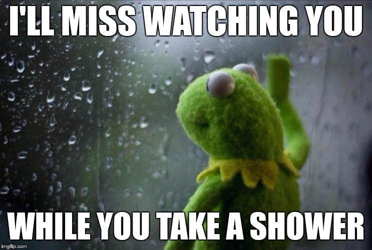 Weird Friendship | I'LL MISS WATCHING YOU WHILE YOU TAKE A SHOWER | image tagged in memes,funny,kermit,window,shower | made w/ Imgflip meme maker