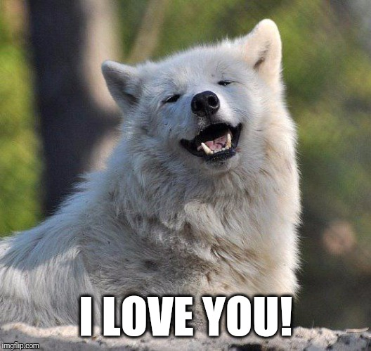 I LOVE YOU! | image tagged in supersecretwolf | made w/ Imgflip meme maker