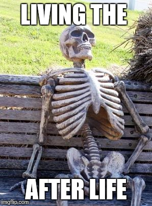 Waiting Skeleton Meme | LIVING THE AFTER LIFE | image tagged in memes,waiting skeleton | made w/ Imgflip meme maker