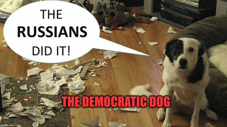 Democrat Dog | THE DEMOCRATIC DOG | image tagged in politics,humor,democrats | made w/ Imgflip meme maker