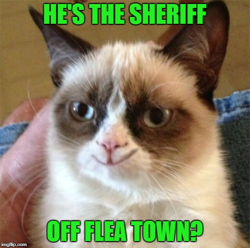 HE'S THE SHERIFF OFF FLEA TOWN? | made w/ Imgflip meme maker