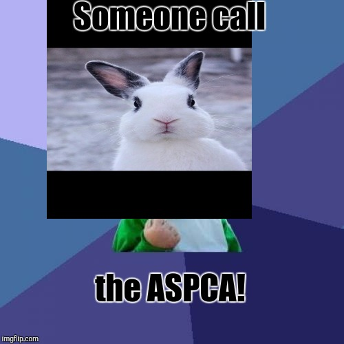 Someone call the ASPCA! | made w/ Imgflip meme maker