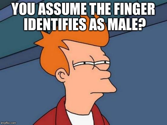 Futurama Fry Meme | YOU ASSUME THE FINGER IDENTIFIES AS MALE? | image tagged in memes,futurama fry | made w/ Imgflip meme maker