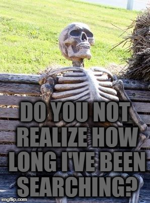 When She Finally Sends Nudes | DO YOU NOT REALIZE HOW LONG I'VE BEEN SEARCHING? | image tagged in memes,waiting skeleton | made w/ Imgflip meme maker