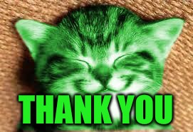 happy RayCat | THANK YOU | image tagged in happy raycat | made w/ Imgflip meme maker