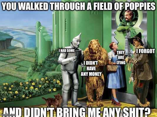 YOU WALKED THROUGH A FIELD OF POPPIES AND DIDN'T BRING ME ANY SHIT? I HAD SOME I FORGOT I DIDN'T HAVE ANY MONEY THEY ARE LYING | image tagged in emerald city door | made w/ Imgflip meme maker