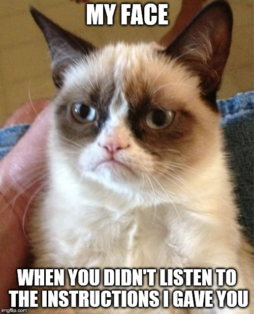 Grumpy Cat Meme | MY FACE WHEN YOU DIDN'T LISTEN TO THE INSTRUCTIONS I GAVE YOU | image tagged in memes,grumpy cat | made w/ Imgflip meme maker