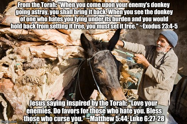 "Jesus and Torah: Love your enemies | From the Torah: ""When you come upon your enemy's donkey going astray, you shall bring it back. When you see the donkey of one who hates you  