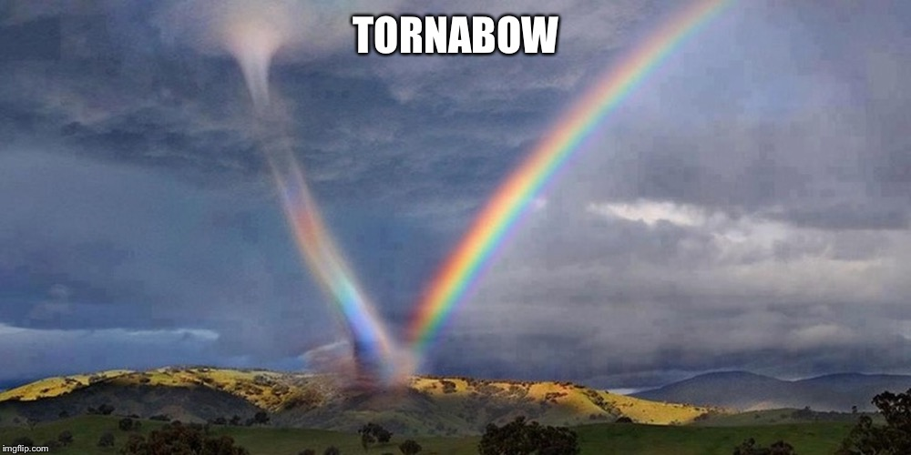 TORNABOW | made w/ Imgflip meme maker
